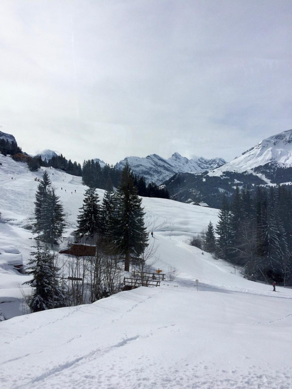 skiing near Wengen